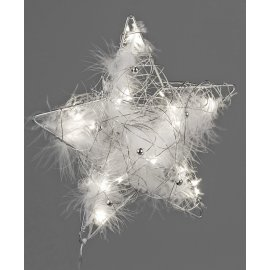 Stern mit Federn LED 25cm silber