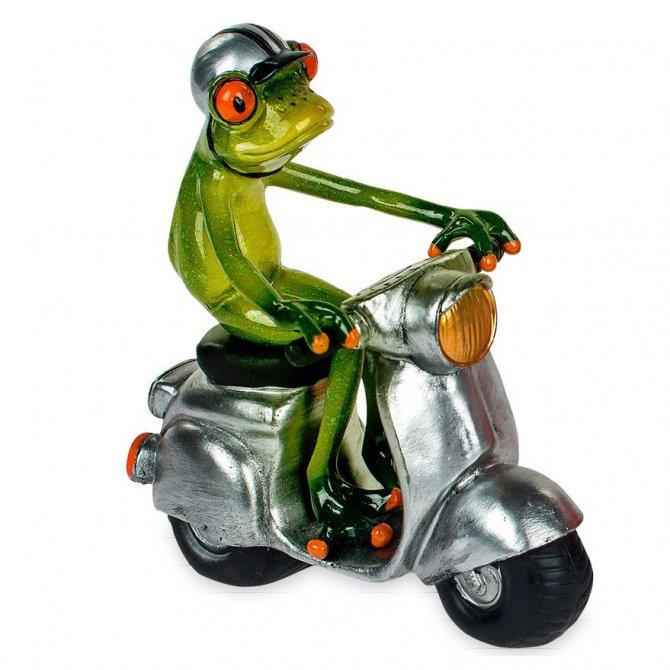 Frosch auf silbernem Roller