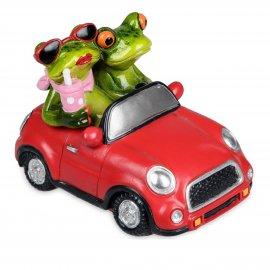 Froschpaar im Auto