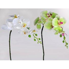 Orchidee 82cm