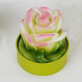 6 Teelichter Rose weiß-pink