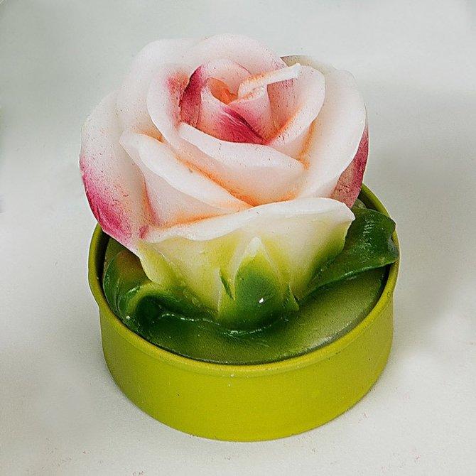 6 Teelichter Rose weiß-rot