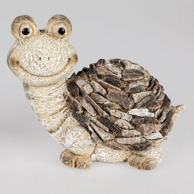 Schildkröte creme-braun